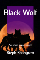 Black Wolf ebook cover