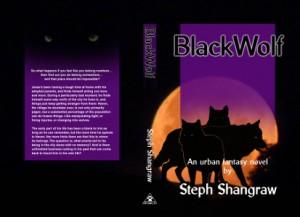 Pre-release version of print cover